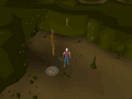 Emote clue - cheer shadow dungeon.png