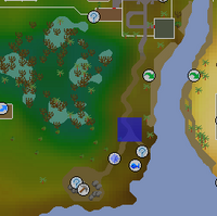 Hot cold clue - Lumbridge Swamp map