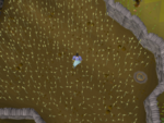 Emote clue - think lumbridge mill wheat field