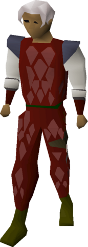 File:Red d'hide armour equipped.png