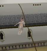 Rooftop Agility Courses (5)