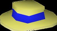 Blue boater detail