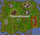 Ironman guide