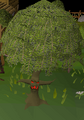 Ent (willow).png