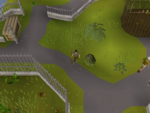 Emote clue - raspberry monkey cage zoo