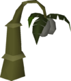Gourd tree.png