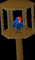 Parrot (blue)