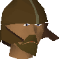 Guard (Desert Mining Camp) (bronze helm) chathead