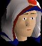 Saradomin max hood chathead