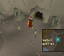 Fremennik Slayer Dungeon