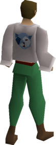 Bob's blue shirt equipped