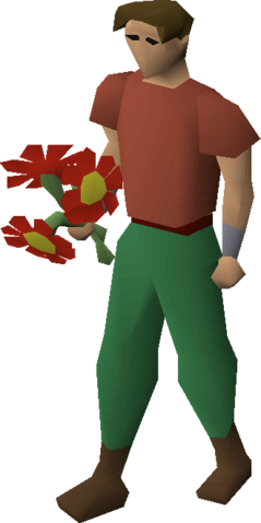 File:Red flowers equipped.png