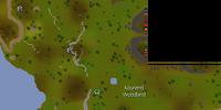 Kourend Woodland