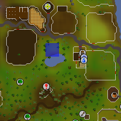 File:Hot cold clue - Lumbridge pond map.png