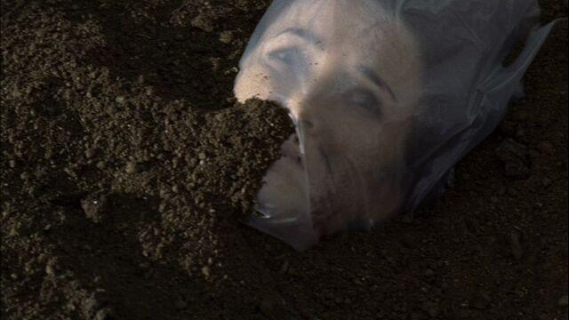 File:Renee-buried.jpg
