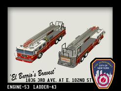 Ladder43