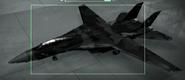 F-14D Razgriz color Hangar