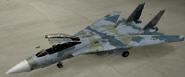 F-14D Mercenary color hangar