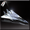 F-14B Event Skin 01-Icon