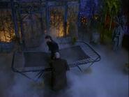 Afn trampoline burglar