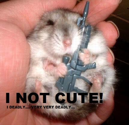 File:Evil hamster meme.jpg
