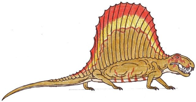 File:Dimetrodon Adult.jpg