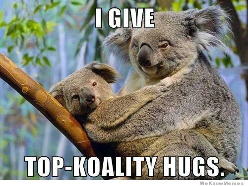 File:Koala hug.jpg