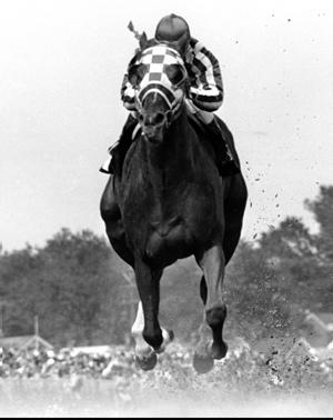 File:Secretariat-racing.jpg