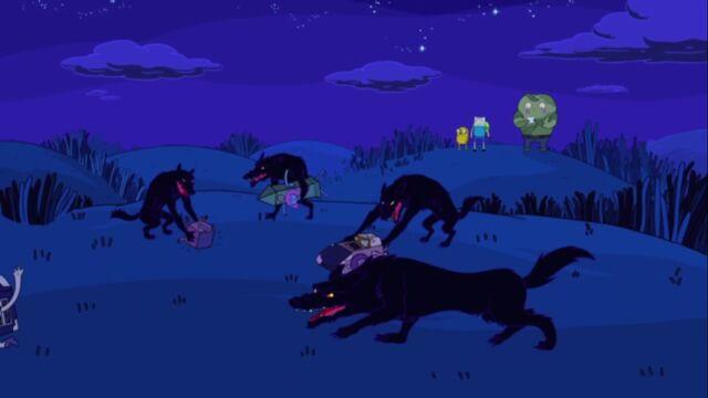 File:Why wolves running wild.jpg