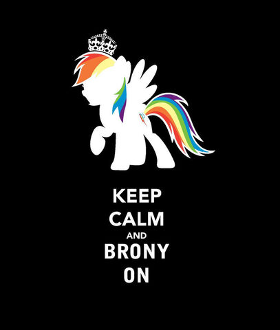 File:Tumblr static brony.jpg