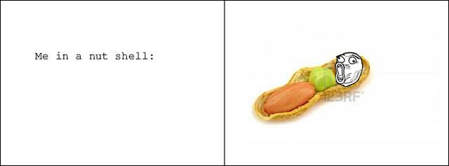 File:Nutshell.png