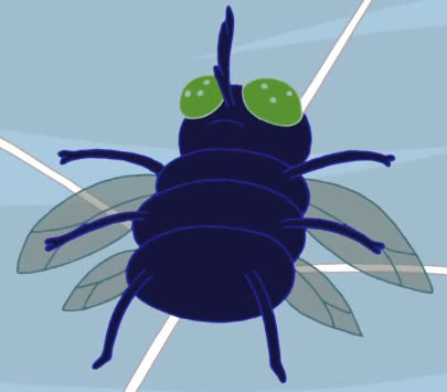 File:Fly Web Weirdos.png