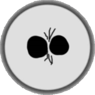 File:Split Button Agar.io Mobile Browser.png