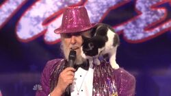 Fantasticfigandcat