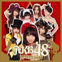 AKB48 - Koko ni Ita Koto reg