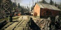 Gray Peak Gorge Ghost Town