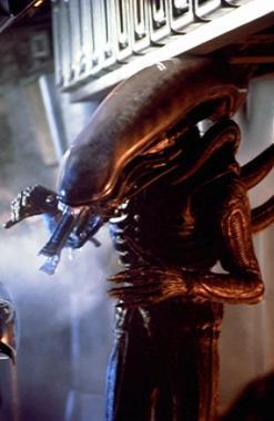 File:Alien (1979) - The Alien.jpg