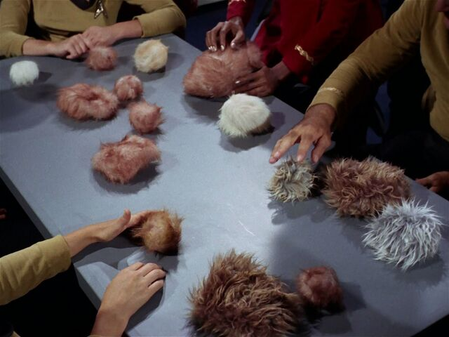 File:Tribbles02.jpg