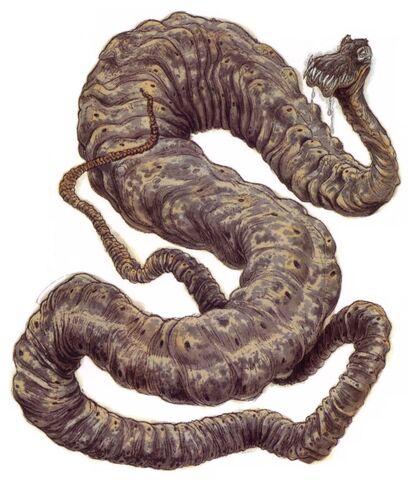 File:Dagobah Python.jpg