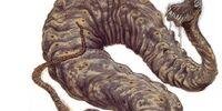 Dagobah Python