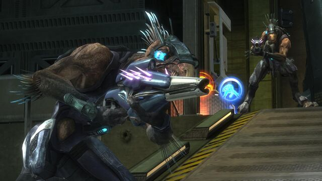 File:Halo-Reach-Covenant-Files-5-Long-Night-Solace-1-Kig-Yar-Jackal.jpg