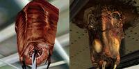 Barnacle (Half-Life)