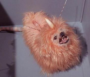 File:Alfa 177 canine.jpg
