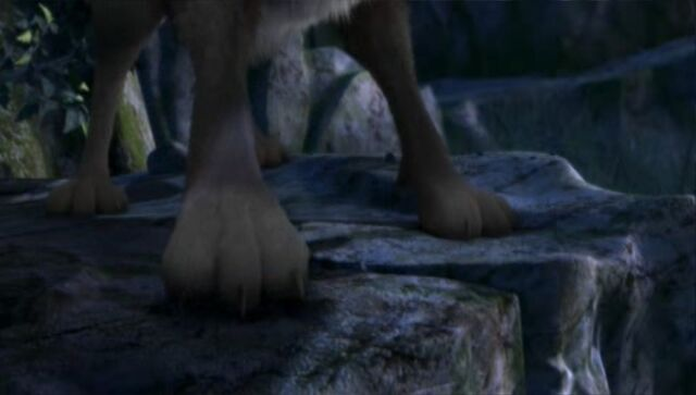 File:Hutch's paws.jpg