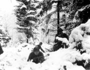 US troops in a winter forest