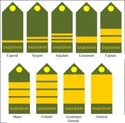 Sag-army-grade