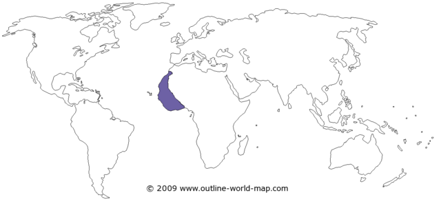 File:Blank-world-map-white-thin-b3a.png