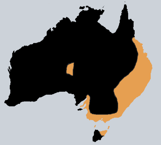 File:Koori Union (PMII).png