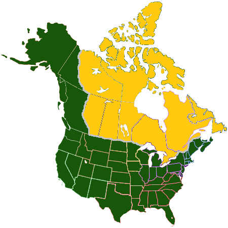 File:American land deal Avaro.png