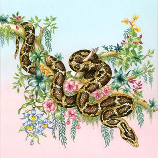 File:Snake.jpg